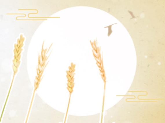 黄金圣斗士星座壁纸 金牛座图片