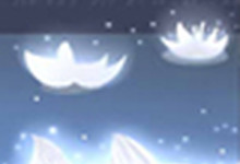 3朵百合花语,送3朵百合花代表什么意思?