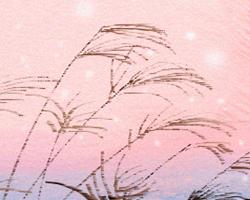 12星座第一_十二星座动漫男生图片-星座图片 - 第一星座网