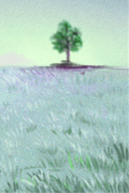 巨蟹座QQ女生-皮肤魅力男生-第一星座网狮子座专辑怎么追摩羯座女生图片