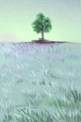 摩羯座QQ专辑-魅力皮肤女生-第一星座网月亮天秤和月亮摩羯座般配吗图片