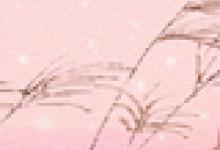 【星座月份】11月18日是什么星座