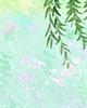 金庸小说中巨蟹座男主角代表