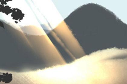 君子兰的花语诗句图片