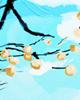 康乃馨花语,白色康乃馨代表着什么