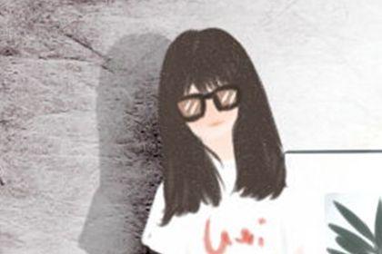 白色康乃馨花语图片