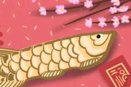 粉色康乃馨花语图片