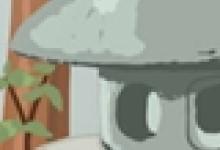 送五朵百合花语代表什么
