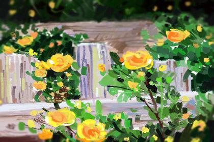 節日花語:三八節送幾朵康乃馨