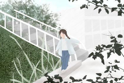 中國十大名花之一:繁花似錦的杜鵑