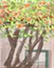 二十四节气习俗:秋分竖蛋习俗