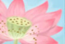傣族最原始的文化:花腰傣