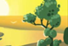 百合花语:未开百合花的花语