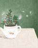 解析:风水卧室适合养花吗?