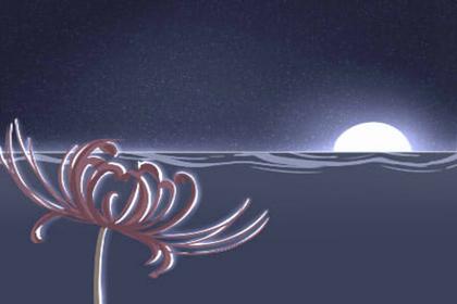 巨蟹让人着迷的