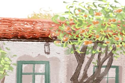 中国最好的祖坟风水宝地图片