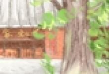 民族文化:傣族泼水节的来历与传说