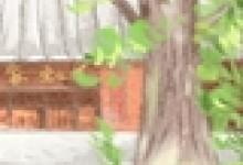 民间工艺:德宏傣族剪纸工艺