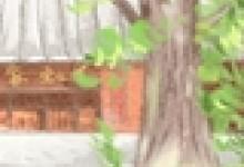 傣族美食,傣家名菜有哪些