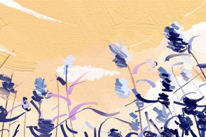 梦见棺材和花环表明不同的生活变化