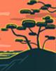 9月13日~9月22日生日树:椴树