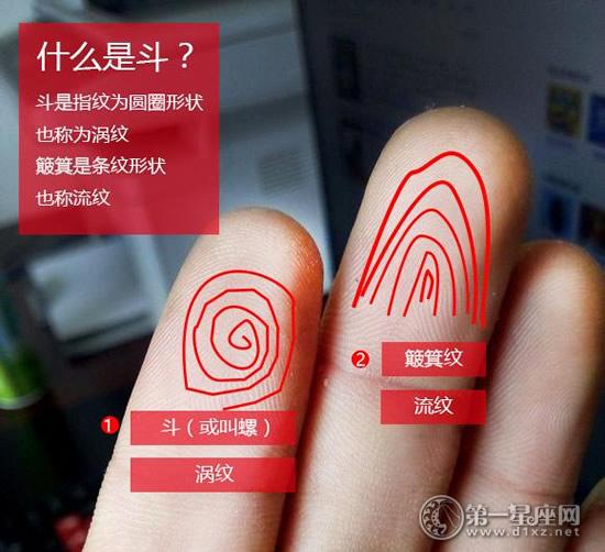 什么是手指斗