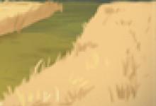 民间童话故事:扛着驴的父子