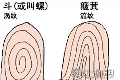 手指10簸箕