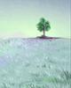 重阳节必备之物:茱萸的图片大全