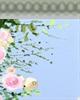 清炖蟹粉狮子头是哪个菜系的代表菜