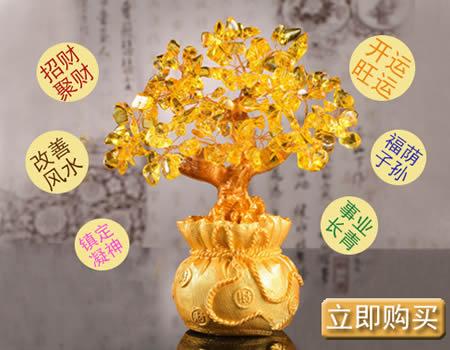 黄水晶摇钱树