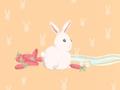 属兔女被追时最反感哪些行为