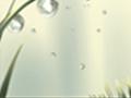 巴蜀人情:乐山非物质文化遗产