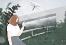 谷雨前后牡丹开,国内有名的牡丹花节